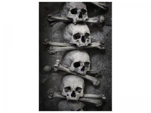 Ljudabsorberande tavla - Skulls - SilentSwede