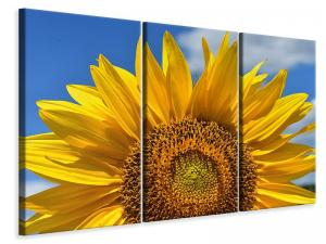 Ljuddämpande tavla - Sunflower in xxl - SilentSwede