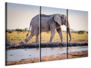 Ljuddämpande tavla - Elephant in the nature - SilentSwede