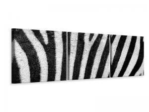 Ljuddämpande tavla - Strip of the zebra - SilentSwede