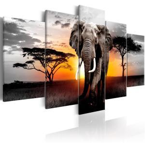 Ljuddämpande tavla - Elephant at Sunset - SilentSwede