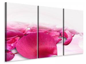 Ljuddämpande tavla - Rose petals in pink III - SilentSwede