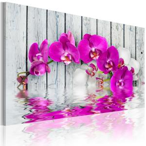 Ljuddämpande tavla - harmoni: orkidé - SilentSwede