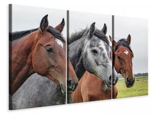Ljuddämpande tavla - The horse trio - SilentSwede