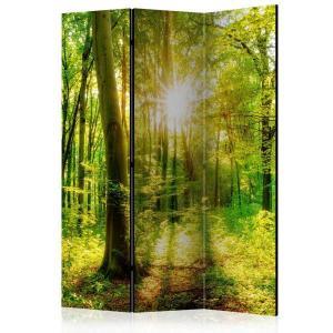 Rumsavdelare - Forest Rays - SilentSwede