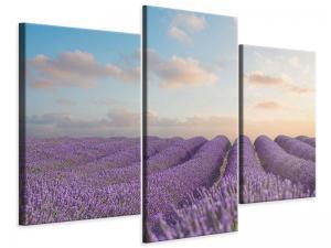 Ljudabsorberande modern 3 delad tavla - The Blooming Lavender Field - SilentSwede