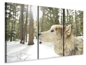 Ljuddämpande tavla - The alaskan malamute - SilentSwede