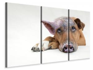Ljuddämpande tavla - The funny pig dog - SilentSwede