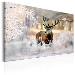 Ljuddämpande & ljudabsorberande tavla - Deer in the Cold - SilentSwede