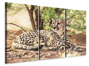 Ljuddämpande tavla - Sun cheetah - SilentSwede