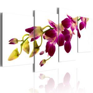 Ljuddämpande tavla - Orchids glöd - SilentSwede