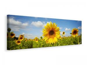 Ljuddämpande tavla - Summer Sunflowers - SilentSwede