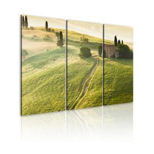 Ljuddämpande tavla - Under the Tuscan Sun - SilentSwede