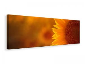 Ljuddämpande tavla - Macro Sunflower - SilentSwede