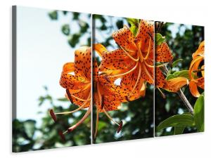 Ljuddämpande tavla - The wild tiger lilies - SilentSwede