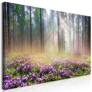 Ljuddämpande tavla - Purple Meadow - SilentSwede