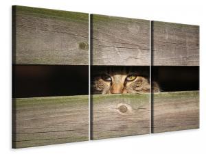 Ljuddämpande tavla - Cat in hiding - SilentSwede