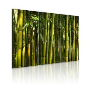 Ljuddämpande tavla - Green bamboo - SilentSwede