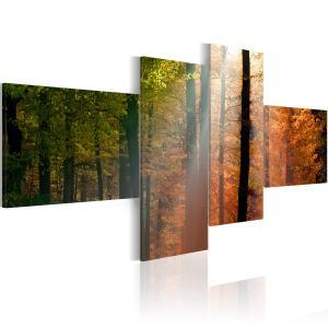 Ljuddämpande tavla - Sunrays between trees - SilentSwede