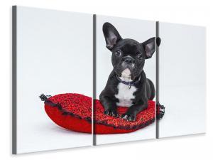 Ljuddämpande tavla - Bulldog to fall in love - SilentSwede
