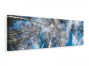 Ljuddämpande tavla - Birch crowns - SilentSwede