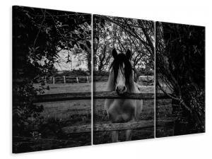 Ljuddämpande tavla - The horse sw - SilentSwede