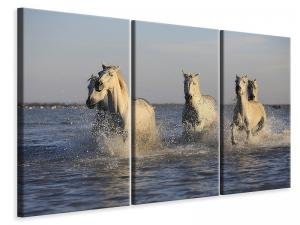 Ljuddämpande tavla - Horses in the sea - SilentSwede