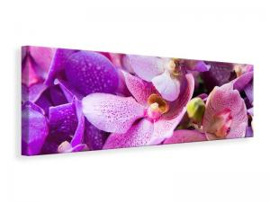 Ljuddämpande tavla - Orchid Paradise - SilentSwede