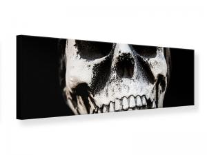 Ljudabsorberande panorama tavla - Skull - SilentSwede