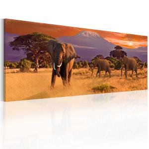 Ljuddämpande tavla - March of african elephants - SilentSwede