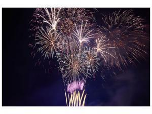 Ljudabsorberande tavla-Fireworks - SilentSwede