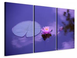 Ljuddämpande tavla - Lotus flower - SilentSwede