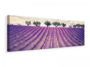 Ljuddämpande tavla - The Lavender Field ii - SilentSwede