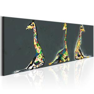 Ljuddämpande & ljudabsorberande tavla - Colourful Giraffes - SilentSwede