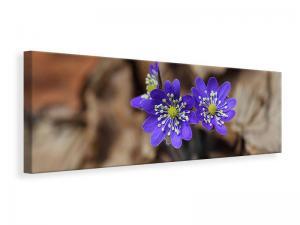 Ljuddämpande tavla - Wildflowers - SilentSwede
