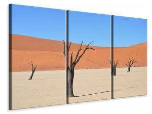Ljuddämpande tavla - Sossusvlei namibia - SilentSwede