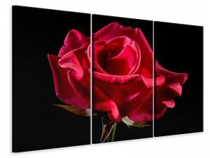 Ljuddämpande tavla - The flower of love - SilentSwede