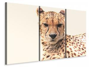 Ljuddämpande tavla - Cheetah in the sun - SilentSwede