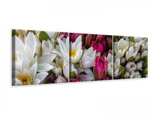 Ljuddämpande tavla - A bouquet of water lilies - SilentSwede