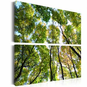 Ljuddämpande tavla - Treetops - SilentSwede