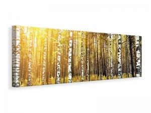 Ljuddämpande tavla - Birch Forest - SilentSwede