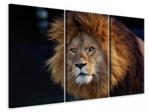 Ljuddämpande tavla - Attention lion - SilentSwede