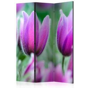 Rumsavdelare - Purple spring tulips - SilentSwede