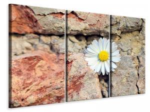 Ljuddämpande tavla - Flower in the wall - SilentSwede