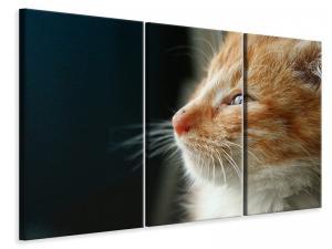 Ljuddämpande tavla - Kitten nose - SilentSwede