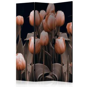 Rumsavdelare - Ladies among the flowers - SilentSwede