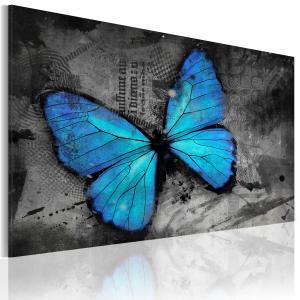 Ljuddämpande & ljudabsorberande tavla - The study of butterfly - SilentSwede