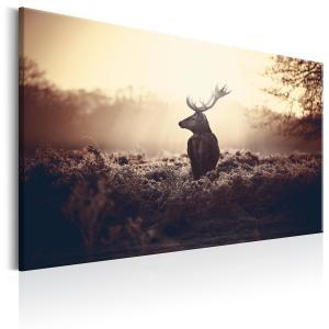 Ljuddämpande & ljudabsorberande tavla - Lurking Deer - SilentSwede