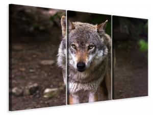 Ljuddämpande tavla - The evil wolf - SilentSwede