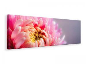 Ljuddämpande tavla - Macro chrysanthemum - SilentSwede